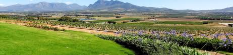 tulbagh self catering house cottage chalet accommodation