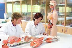 Chemistry In Anatomy And Physiology Facilities Coffs Harbour Campus Of Health U0026 Human