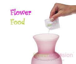 flower food packets you can use one of those flower food packets but this recipe is