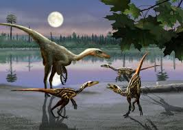 10 facts about troodon