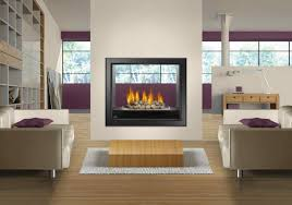 home decor best freestanding direct vent gas fireplace home