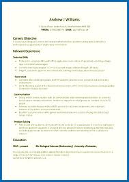 exles on resumes problem solving skills exles resume embersky me