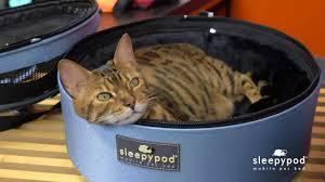 Sleepypod Mobile Pet Bed Sleepypod Mobile Pet Bed Instructional Youtube