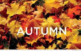 cute autumn backgrounds cute autumn quotes
