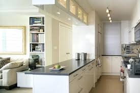 small galley kitchen storage ideas small apartment kitchen design photos open designs in apartments