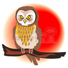 Barn Owl Holidays Barn Owl Clipart Cartoon Halloween Pencil And In Color Barn Owl