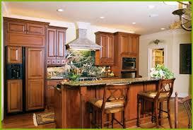 kitchen cabinets new brunswick 12 beautiful kitchen cabinet doors new brunswick pictures kitchen