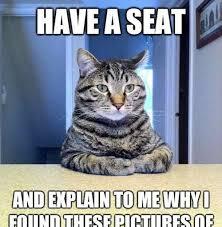 Business Cat Memes - stupid cat memes image memes at relatably com