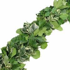 green fresh garland