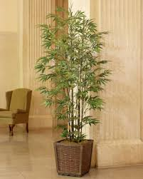 realistic 6 5 to 8 silk artificial trees at officescapesdirect