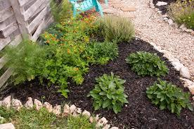 central texas native plants lantana a round rock garden