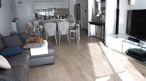 Laminate Flooring Sydney Gold Coast European Oak Brushed U0026 Oiled Zealsea