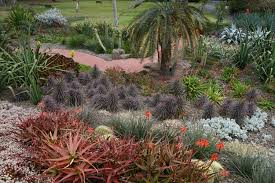 Melb Botanical Gardens by Royal Botanical Gardens Melbourne The Learning Curve