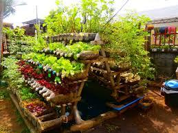Patio Vegetable Garden Ideas Backyard Vegetable Garden Design Backyard Vegetable