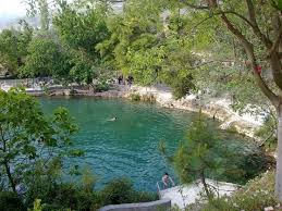 Natural Swimming Pool 65 Best Natural Swimming Pools Ponds And Pools Images On