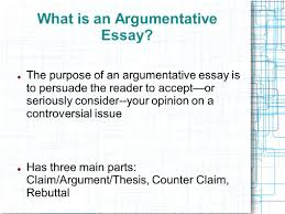 sample of argumentative essay introduction 100 original sample introduction paragraph argumentative essay mla format in essay mla format argumentative essay outline document the fourth turn mla format