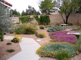 low maintenance desert landscaping ideas desert landscaping
