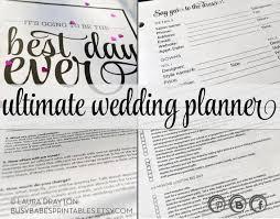 Ultimate Wedding Planner 109 Best Wedding Planner Images On Pinterest Wedding Checklists