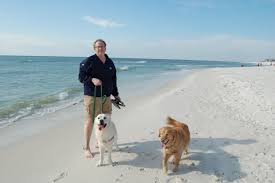 your dogs should join you on your next beach vacation cape san