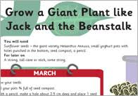 jack u0026 the beanstalk teaching resources free early years