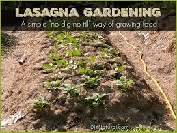 2532 best diy gardening images on pinterest backyard ideas