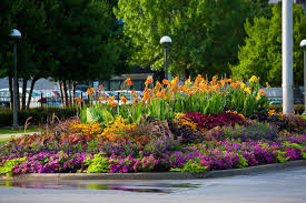 perennial flower bed design examples perennial garden design for