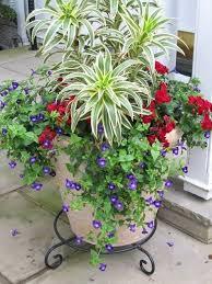 40 creative garden container ideas and plant pots gardens