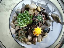 terrarium coffee table diy succulent terrarium unusual coffee