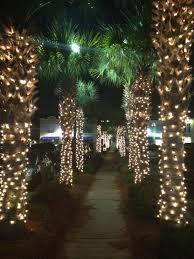 palm tree christmas tree lights christmas lights palm trees christmas decor inspirations