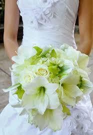 Wedding Flower Magazines - your guide to wedding flowers comfort inn