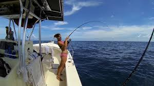 swfl tv offshore fishing in the gulf with island fever charters