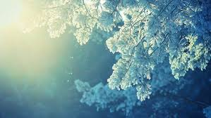 winter anime wallpaper hd anime nature snow winter cold sunlight peaceful wallpapers hd