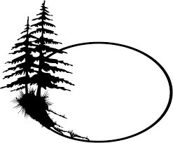 fir tree clipart pine tree outline pencil and in color fir tree