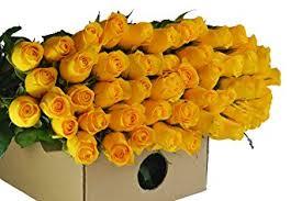 roses wholesale farm2door wholesale roses 50 fresh yellow roses