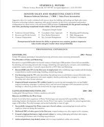 Sales And Marketing Resume Examples by Sales Executive Page1 Marketing Resume Samples Pinterest