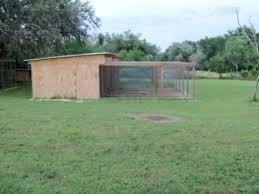 square footage mixed aviary backyard chickens