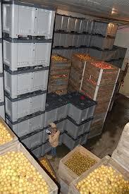 chambre froide pour fruits et l馮umes janny mt conservation en atmosphère contrôlée fruits légumes