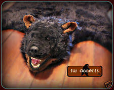 Taxidermy Bear Rug Black Bear Rug Ebay