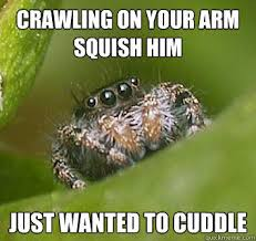 Funny Spiders Memes Of 2017 - misunderstood spider know your meme