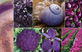 purple color meaning colour psychology the meaning of purple karen haller blog