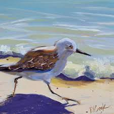 sandpiper birds archives p j cook artist studio