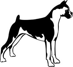 boxer dog black and white black and white boxer dog clipart the cliparts