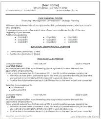 Entry Level Resume Templates Word Cfo Resume Examples Executive Resume Writing Resume Writer For