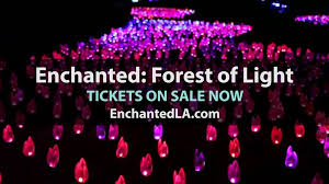 enchanted forest of light tickets descanso gardens