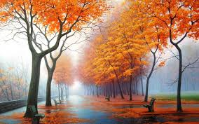 rainy orange trees wallpaper