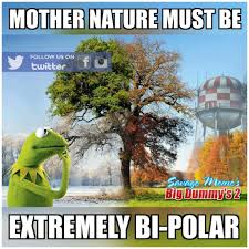 Funny Weather Memes - new england weather is it funny or offensive