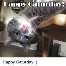 Caturday Meme - happy caturday happy caturday caturday meme on me me