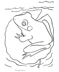 frog coloring pages 005