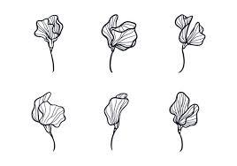flower sketch free vector art 9697 free downloads