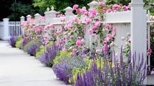 street side of front yard fence plantings increase your home curb